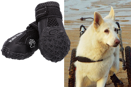 Trixie Walker Active Protective Dog Boots