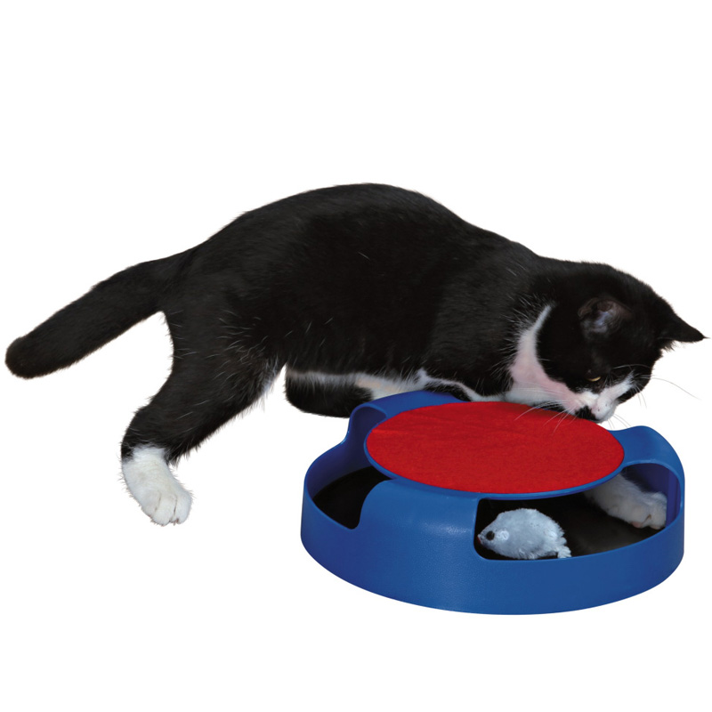 Catch the mouse fun cat toy