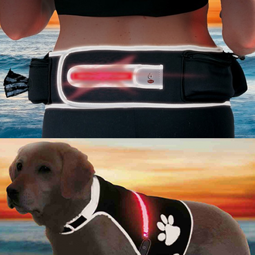 Flash Active Belt by Trixie and Safer Life Flashing Safety Vest