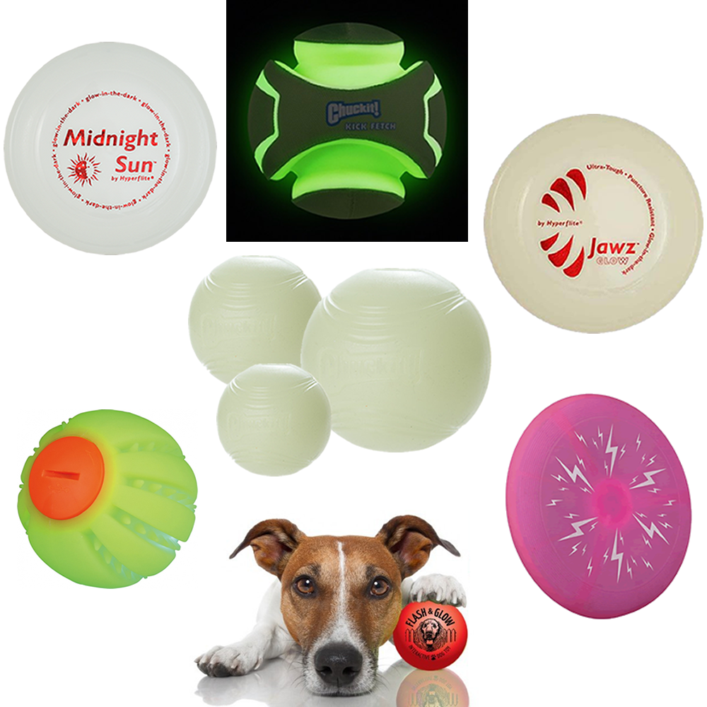 HyperFlite Midnight Sun Flying Disc, Chuckit! Light Play Kick Fetch Dog Toy, Hyperflite Jawz Bite Resistant Flying Disc, Chuckit Max Glow Ball for Dogs, The Flashing Bal,The Flash Dog Disc, The Flash & Glow Illuminated Ball for Dogs