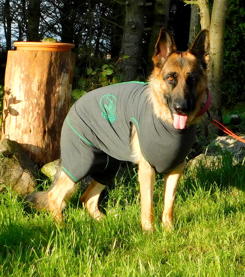 Tilly in her Vetgood Suit