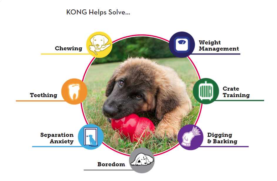 KONGs solve these problems