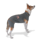 S-Plus Vetgood Protective Medical Suit for Dogs
