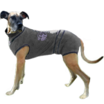 XL Vetgood Protective Medical Suit for Dogs