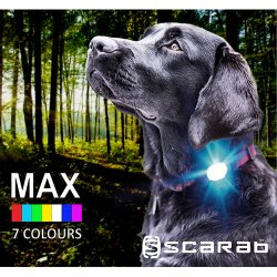 Scarab MAX Rechargeable Flashing Safety Beacon