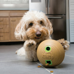 KONG Bamboo Treat Dispensing Dog Toys