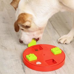 iQuties Puzzle Wheel Pet Toy