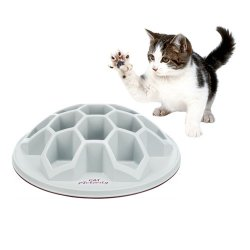 Cat Activity Snack Hive Strategy Game