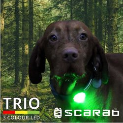 Scarab Trio Rechargeable Flashing Safety Beacon