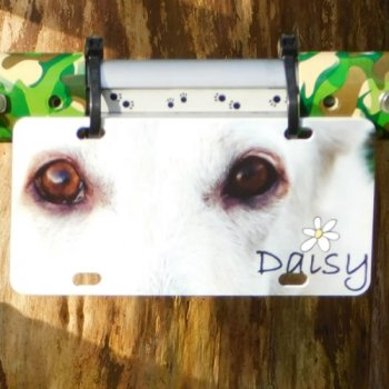 Daisy's customised license plate!