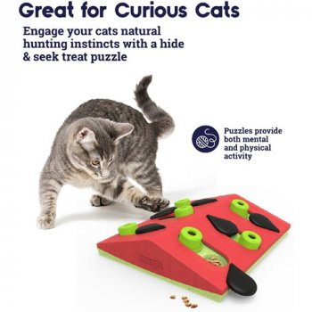 Great for curious cats